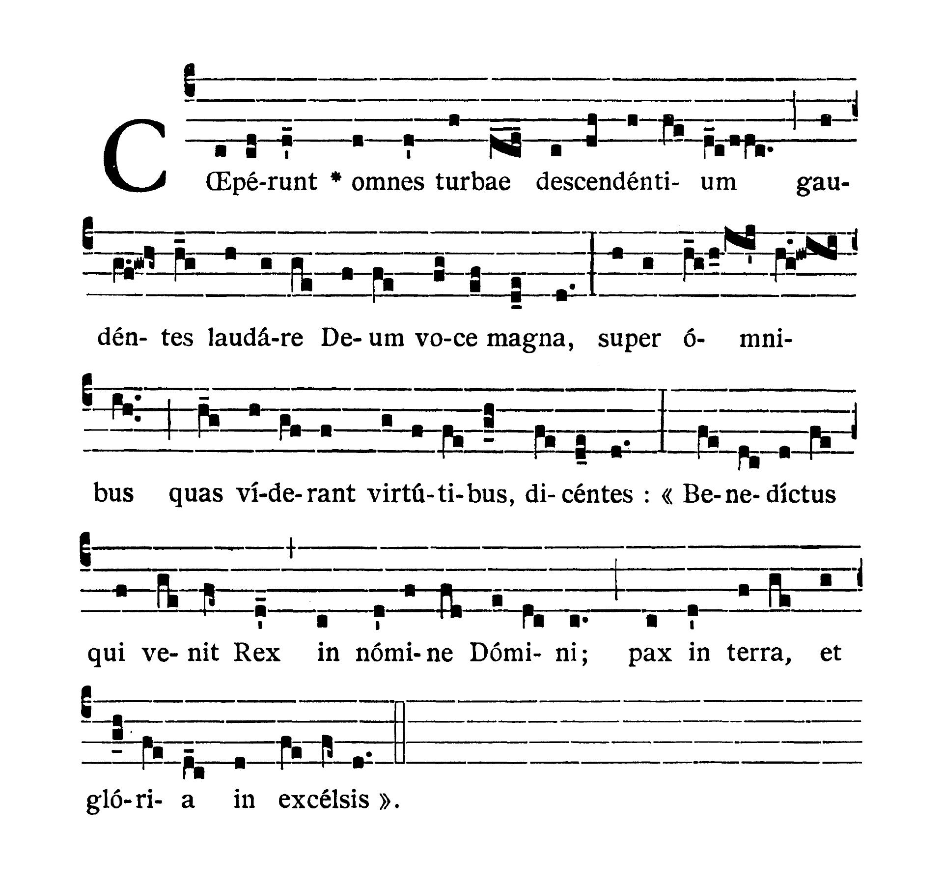 Dominica II in Passionis seu in Palmis (II Niedziela Męki Pańskiej lub Palmowa) - Antiphona (Coeperunt omnes turbae)