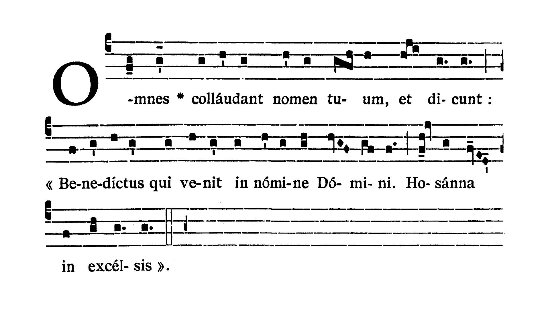 Dominica II in Passionis seu in Palmis (II Niedziela Męki Pańskiej lub Palmowa) - Antiphona (Omnes collaudant)