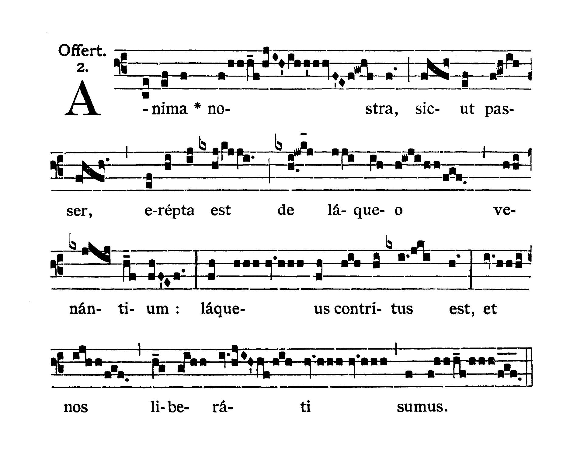 Sanctorum Innocentium (Świętych Młodzianków Męczenników) - Offertorium (Anima nostra)