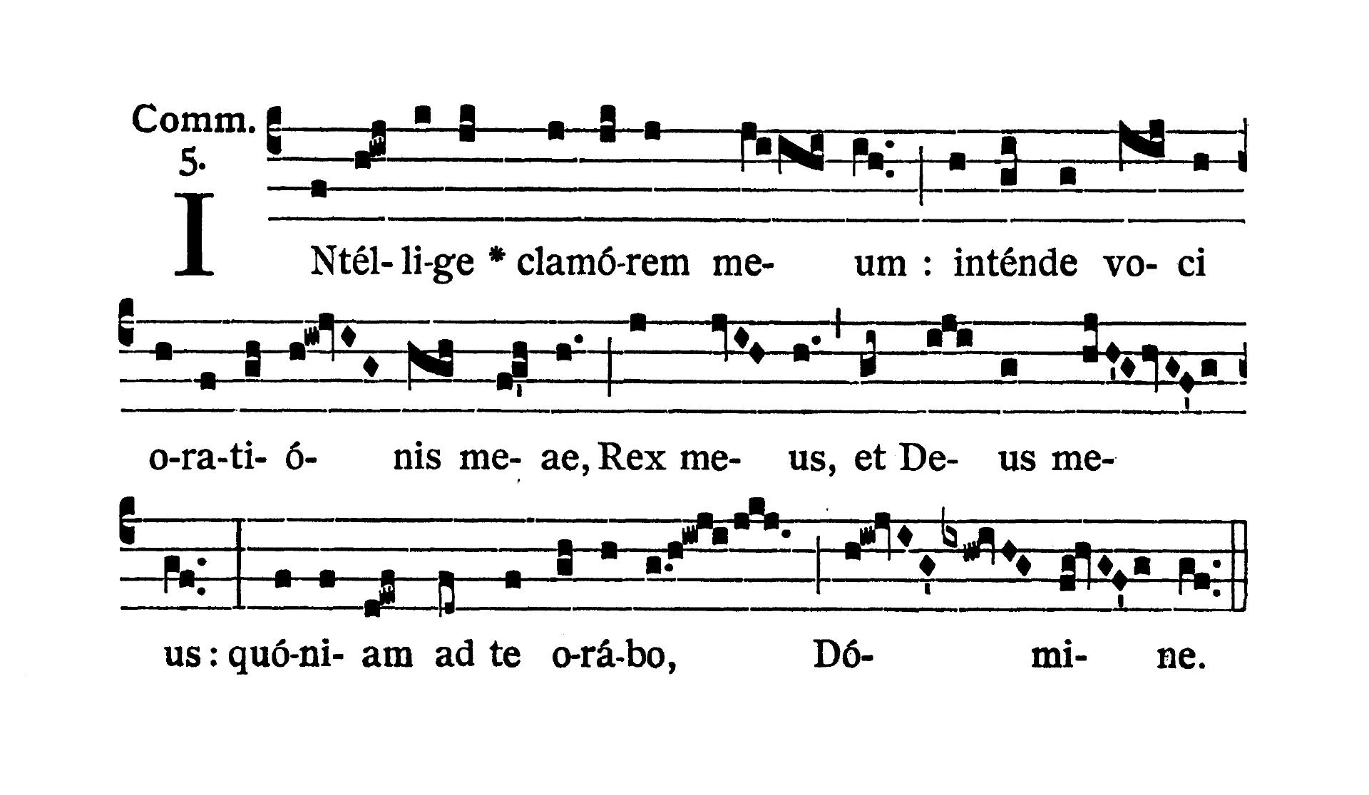 Feria IV Quatuor Temporum Septembris (Środa suchych dni wrześniowych) - Communio (Comedite)